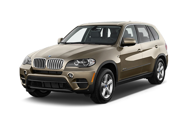 x5-brown